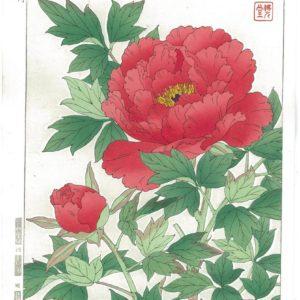 Kawarazaki Shodo Red Peony Woodblock Print