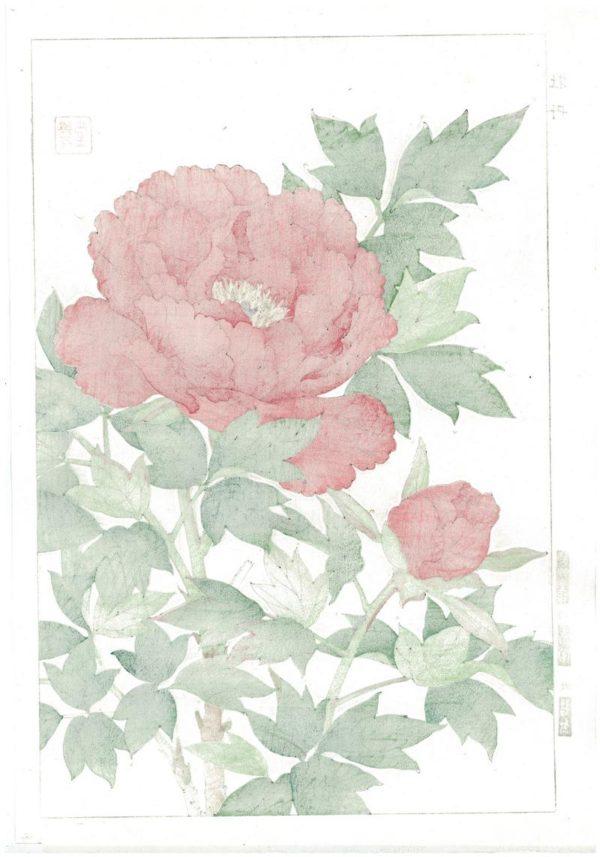 Shodo Kawarazaki Spring Flower Red Peony Woodblock Print