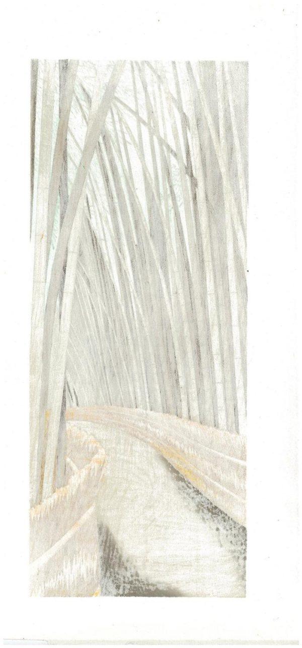 Original Teruhide Kato Woodblock Sagano