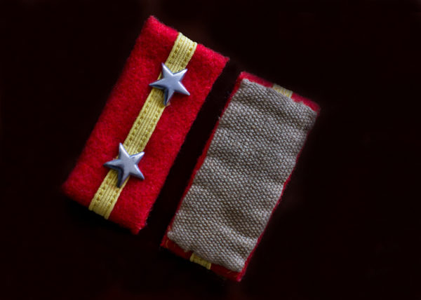 Rare WWII Imperial Japanese Army Insignia
