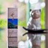 Shoyeido Xiang-do Frankincense Incense 20 Sticks