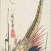 Hiroshige Woodblock Golden Pheasant in Bracken