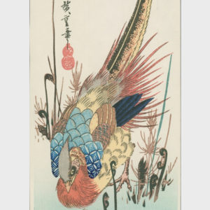 Hiroshige Woodblock Golden Pheasant in Bracken