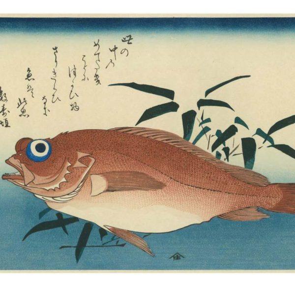 Hiroshige Sea Bream Woodblock Print