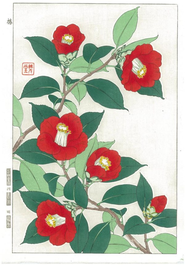 Kawarazaki Shodo Spring Flowers Red Camellias Woodblock Print