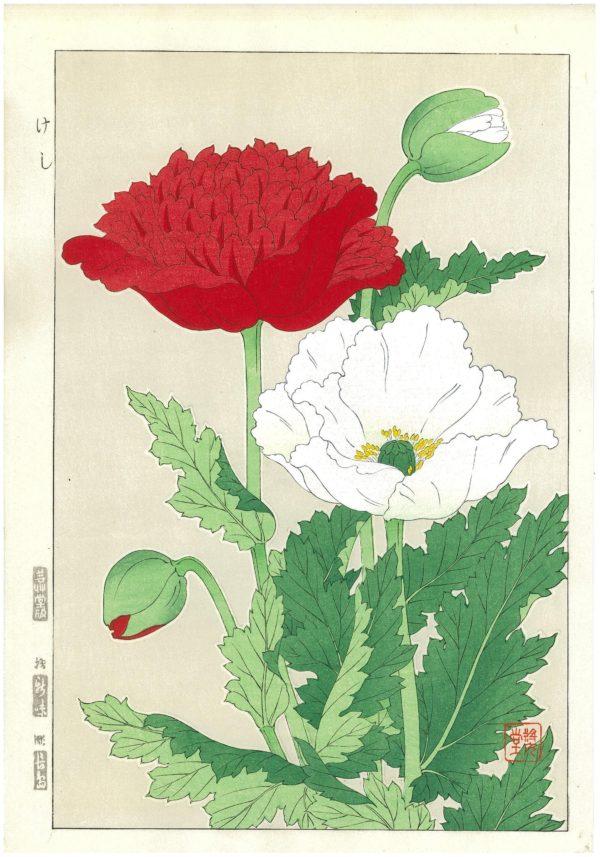 Shodo Kawarazaki Spring Flowers Poppies Woodblock Print