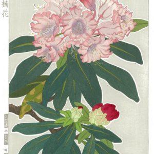 Teru Kuzuhara Spring Flowers Rhododendron Woodblock Print