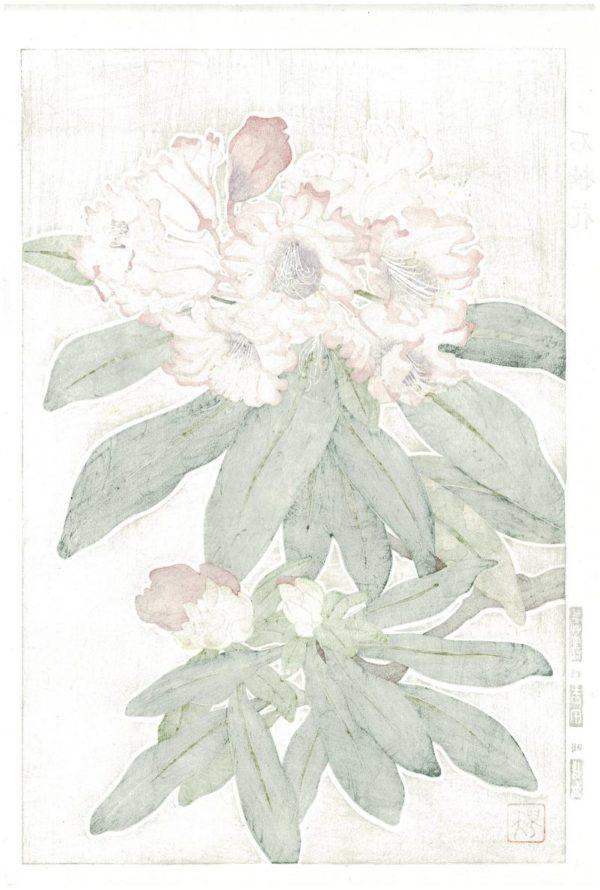 Teru Kuzuhara Spring Flower Rhododendron Woodblock Print