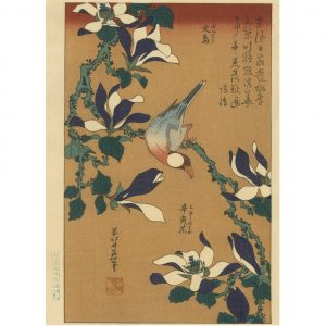 Hokusai Woodblock Java Sparrow And Magnolia
