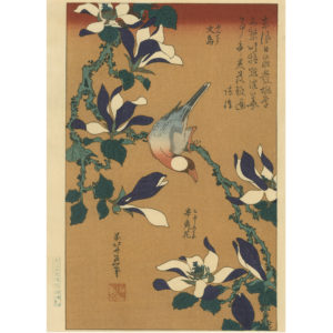Hokusai Woodblock Print Java Sparrow And Magnolia