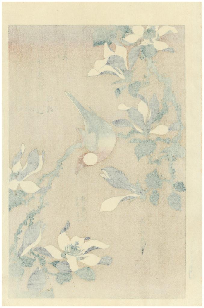 Hokusai Woodblock Print Java Sparrow And Magnolia