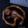 Antique Signed Netsuke Monkey with Black Coral Eyes