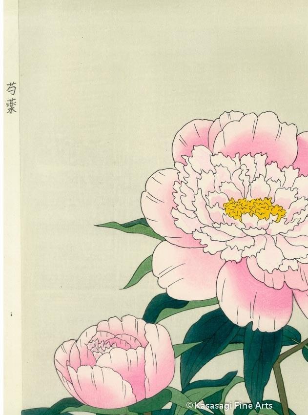Original Nisaburo ITO Woodblock Peony Pink