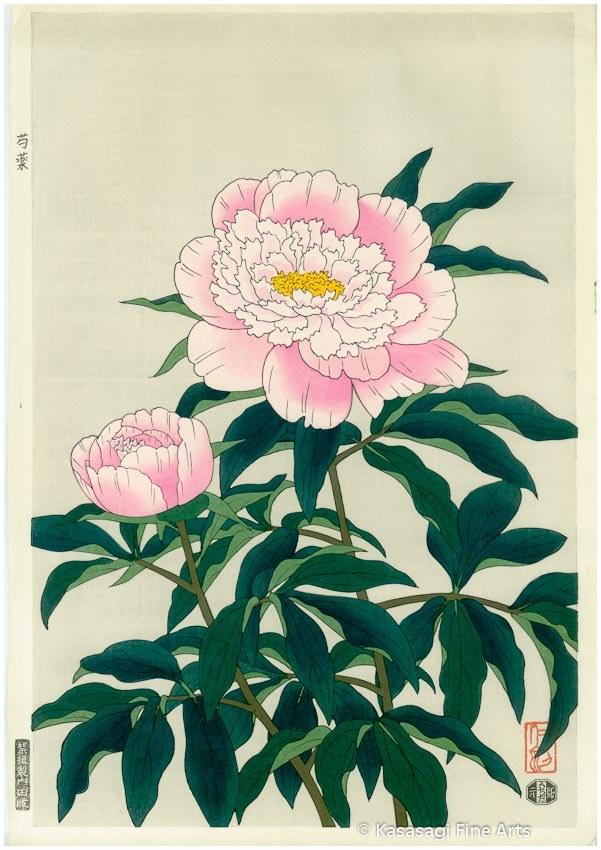 Nisaburo ITO Woodblock Peony Pink