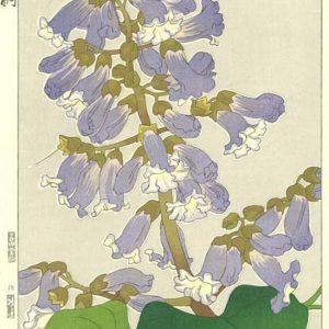Teru Kuzuhara Paulownia Woodblock Print