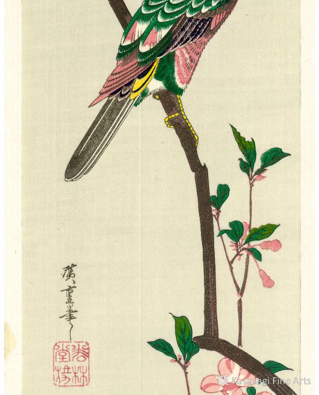 Hiroshige Woodblock Parakeet On Crab Apple