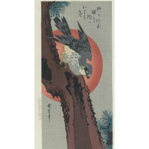 Hiroshige Woodblock Hawk On Pine Tree