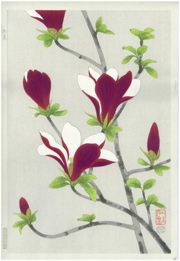 Nisaburo ITO Woodblock Magnolias