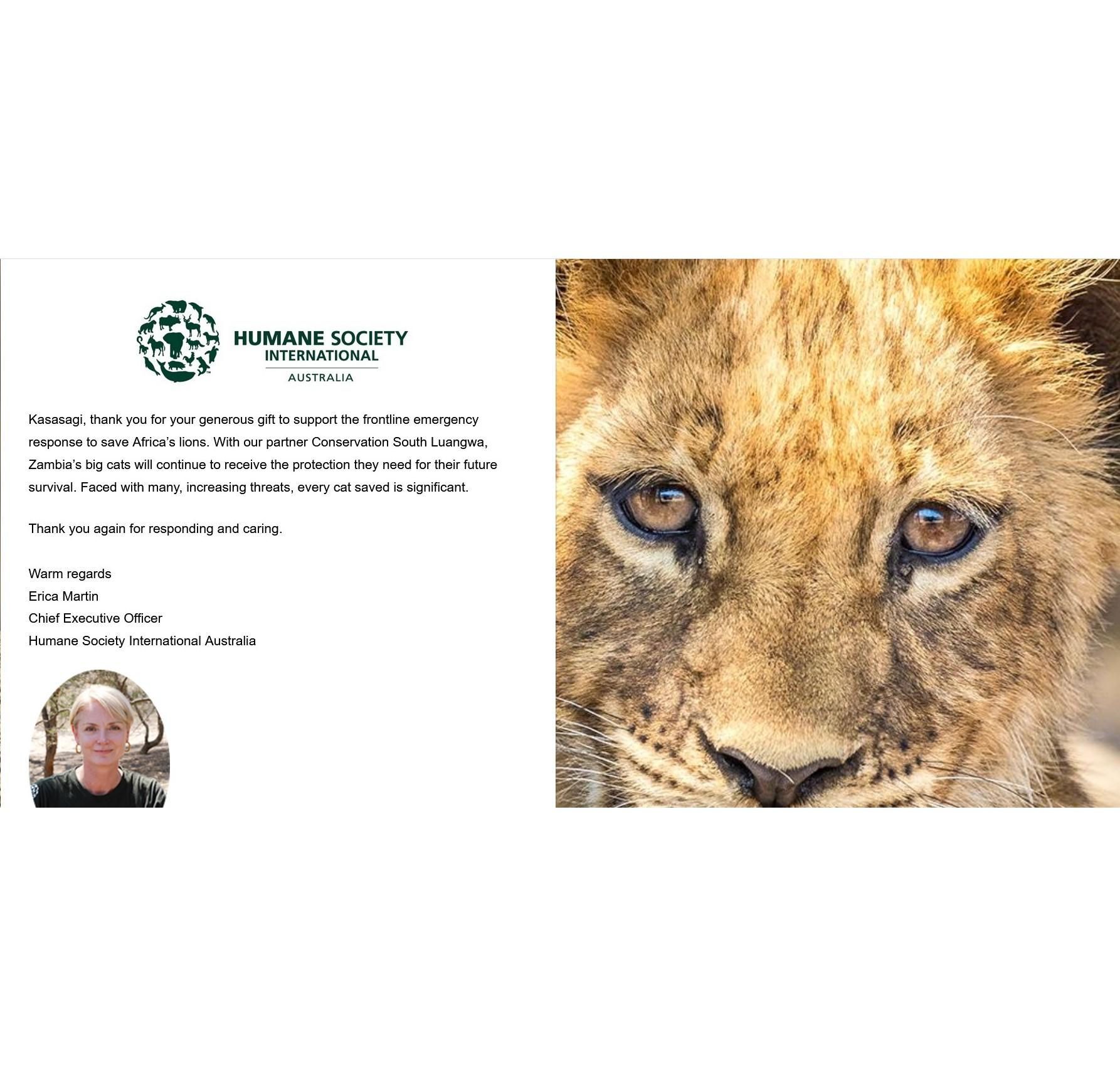 Humane Society International African Lions