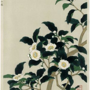 Nisaburo ITO Woodblock Tea Tree Flowers